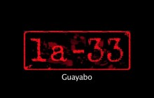 Guayabo - video